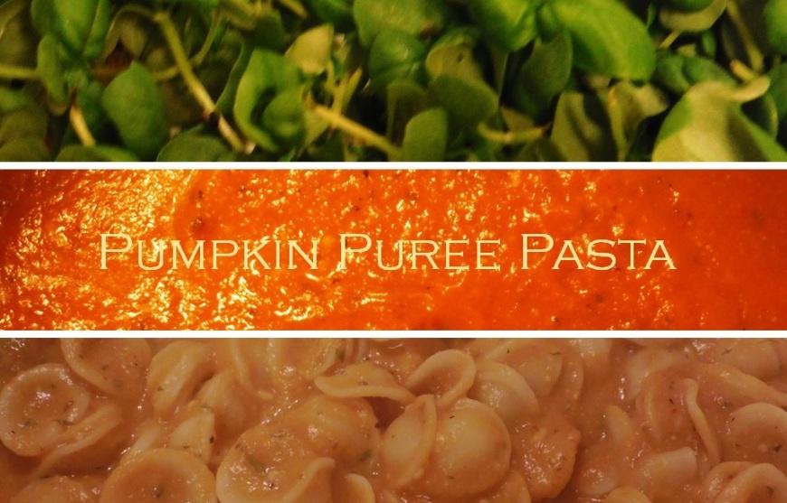 pumpkin pasta-Darcy Oliver