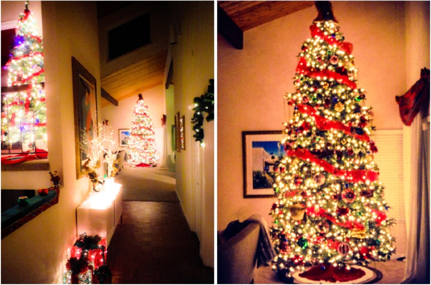 christmas tree, lights-Darcy Oliver Design