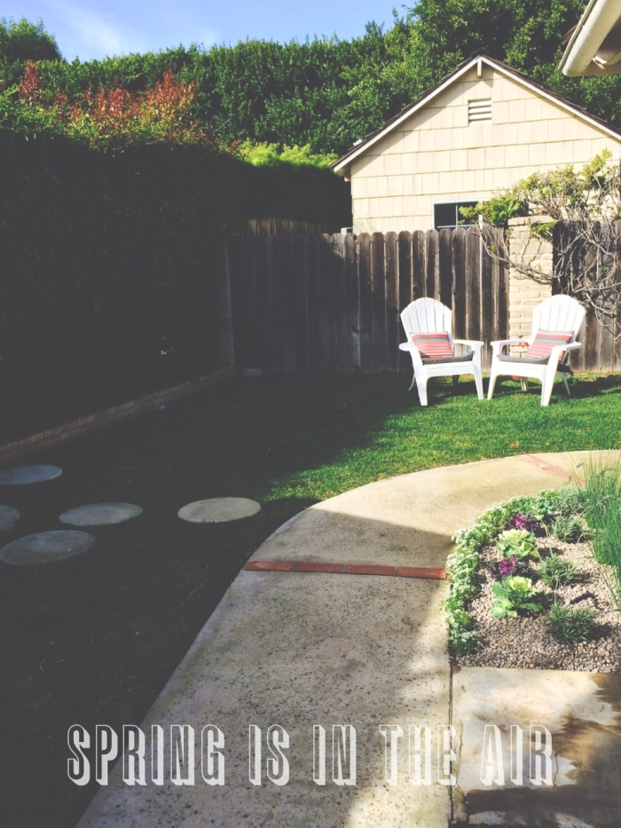 spring, yard, home decor, flowers-Darcy Oliver Design