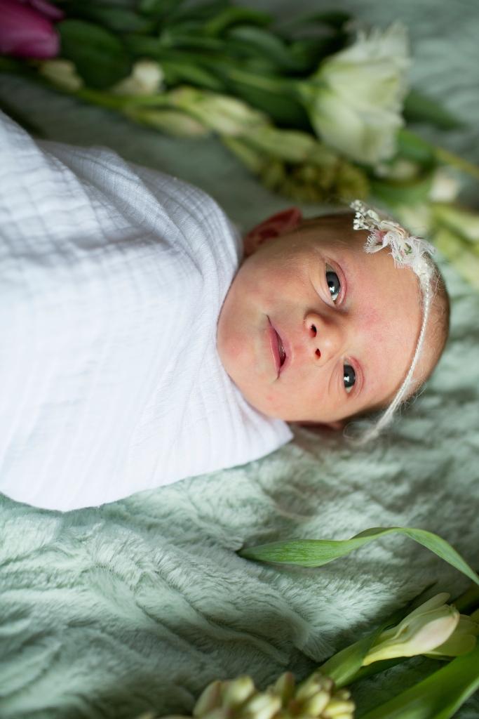 blue eyed baby, newborn-Darcy Oliver Design